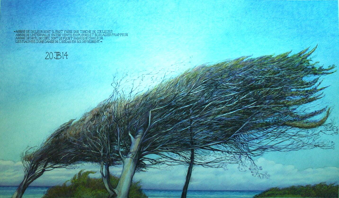 """Philippe Brobeck - """" l'arbre froissé """""""