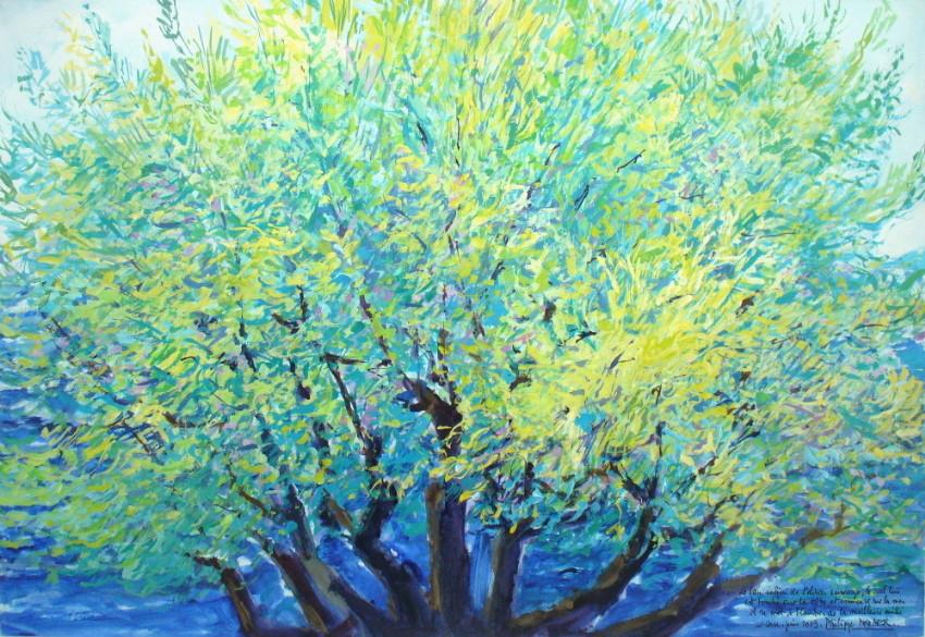 "Philippe Brobeck - "" L'olivier sauvage """