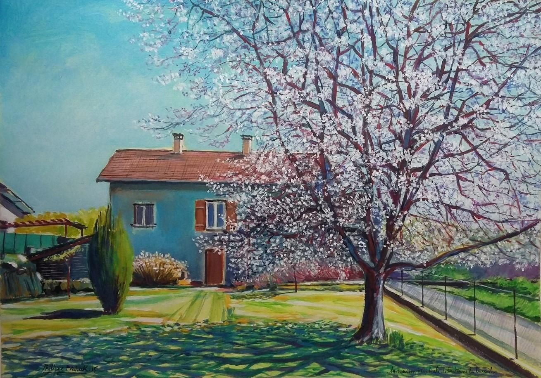"""Philippe Brobeck - """" Le cerisier en fleurs de Fontaine les Luxeuil """""""