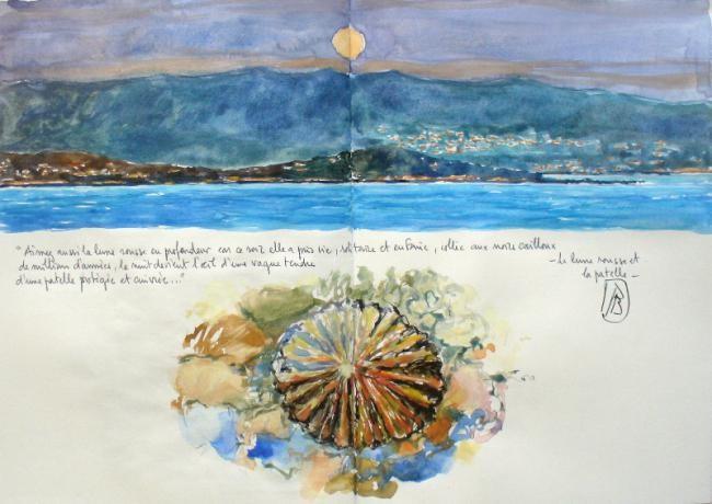 Philippe Brobeck - la lune rousse et la patelle