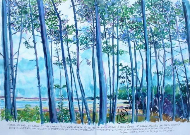 "Philippe Brobeck - "" Les pins au Gatseau"""