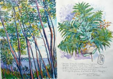 """"""" Les pins et le bouquet de fougères """""""
