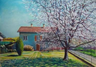 """"""" Le cerisier en fleurs de Fontaine les Luxeuil """""""