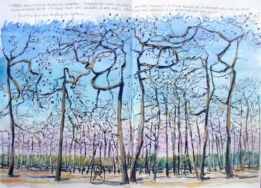 """"""" Les arbres brulés de la plage du gatseau """""""