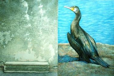 le banc et le cormoran