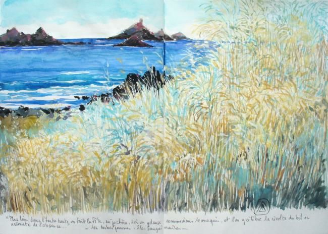 Philippe Brobeck - les herbes jaunes aux Sanguinaires